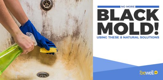 <thrive_headline click tho-post-58361 tho-test-856>How To Spot Black Mold And 8 Natural Ways To Clean It</thrive_headline>