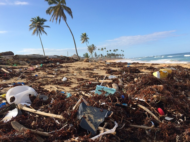 A magnificent beach covered in trash.