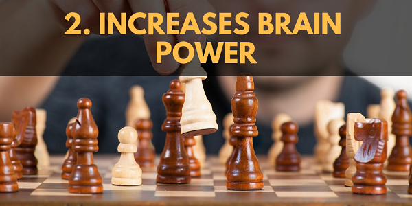 MCT Oil Increases Brain Power