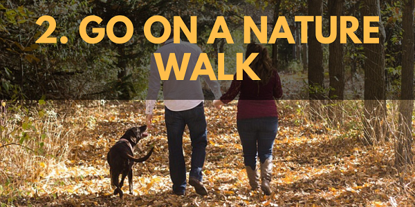 Winter Activities: Go on a Nature Walk